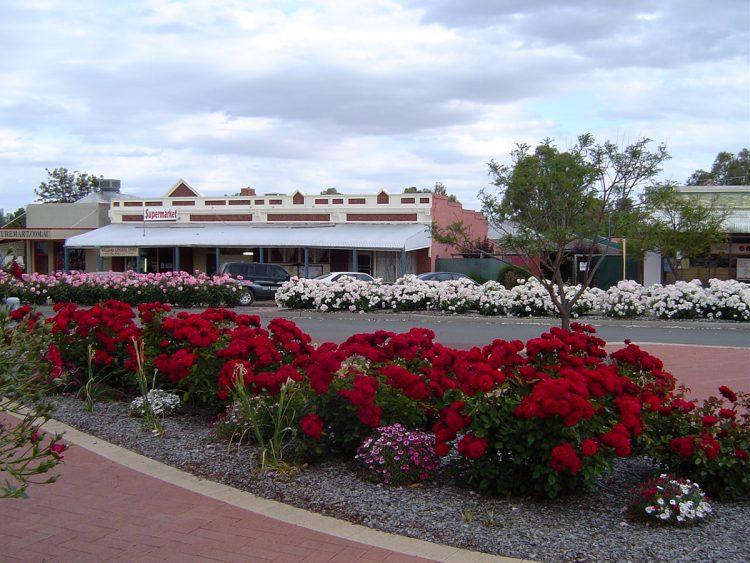 Williams Dawsons Funeral Service Area